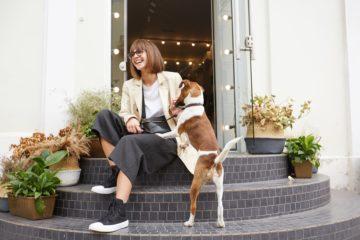 Layout de Pet Shop